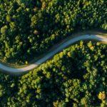 curvy-road